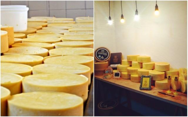 queijo-alagoa